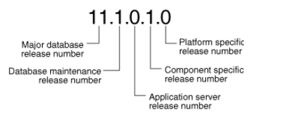 Release_Number